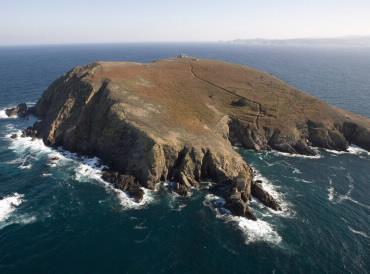 Coelleira Island