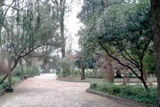 Caldas De Reis Mapa.Park Parque E Carballeira De Caldas De Reis In Caldas De