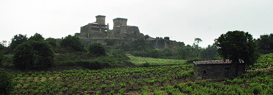 Monterrei Wine Route