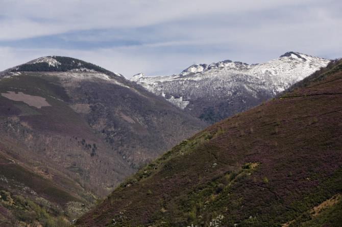 Sierra de Os Ancares