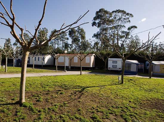 Camping El Terr 211 N En Vilanova De Arousa Pontevedra Galicia
