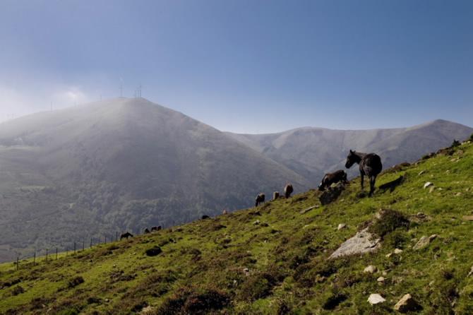 Serra do Xistral