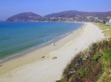 Playa Area