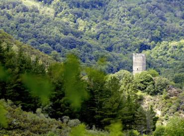 Torre de Doncos