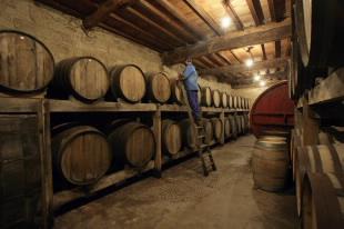 <i>Tour</i> of the designations of origin of Galician wines
