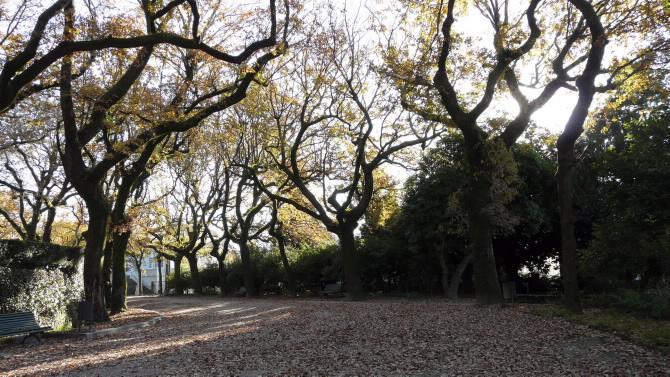 Alameda de Santiago