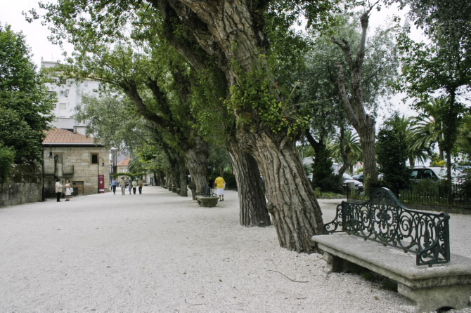 Alameda da Calzada. Cambados