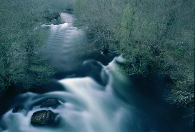 River Avia