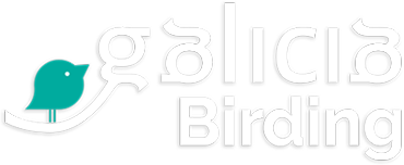 Birding in Galicia